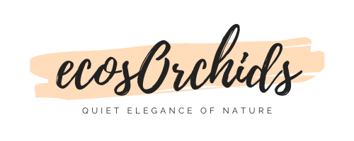 ecosOrchids (1) (1)